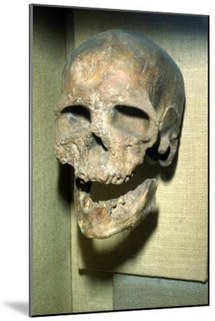 Cromagnon Skull Upper Paleolithic from France, c50,000BC-c10,000 BC-Unknown-Mounted Giclee Print