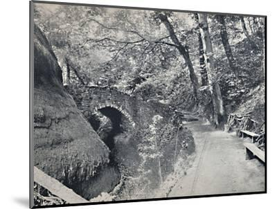 'Shanklin - The Chine', 1895-Unknown-Mounted Photographic Print