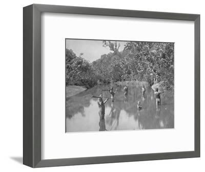 'Australian Aborigines Spearing Fish', 19th century-Unknown-Framed Photographic Print