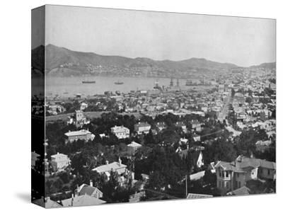 'Wellington', 19th century-Unknown-Stretched Canvas Print
