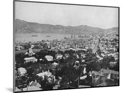 'Wellington', 19th century-Unknown-Mounted Photographic Print