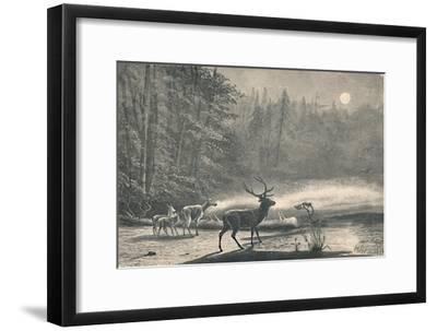 'Deer on Lake St. Regis, at night', 1883-Unknown-Framed Giclee Print