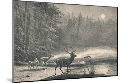 'Deer on Lake St. Regis, at night', 1883-Unknown-Mounted Giclee Print