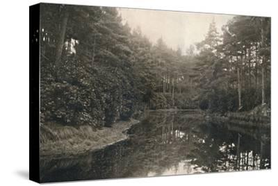 'Branksome Chine and Lake', c1910-Unknown-Stretched Canvas Print