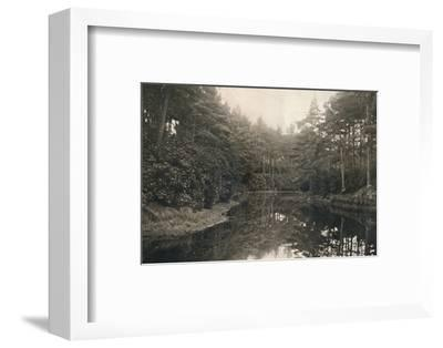 'Branksome Chine and Lake', c1910-Unknown-Framed Photographic Print