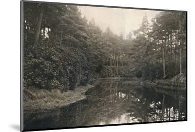 'Branksome Chine and Lake', c1910-Unknown-Mounted Photographic Print