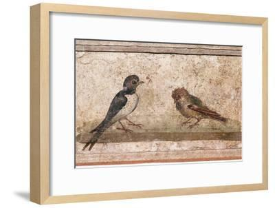 Swallow and Sparrow, Roman wall painting from Boscoreale near Pompeii, 1st century-Unknown-Framed Giclee Print