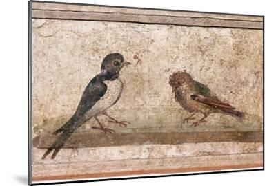Swallow and Sparrow, Roman wall painting from Boscoreale near Pompeii, 1st century-Unknown-Mounted Giclee Print