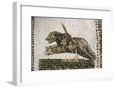 Roman Mosaic detail of Bear, from Diana the Huntress, Thuburbo Majus, Tunisia, c4th century-Unknown-Framed Giclee Print