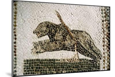 Roman Mosaic detail of Bear, from Diana the Huntress, Thuburbo Majus, Tunisia, c4th century-Unknown-Mounted Giclee Print