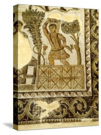 Fruit Collecting and grape treading Mosaic, c3rd century-Unknown-Stretched Canvas Print