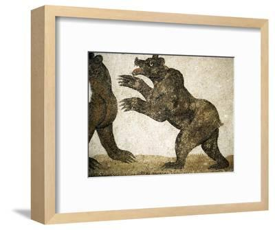 Bears Fighting, detail of Roman floor mosaic, from Utica, Tunisia, c3rd century-Unknown-Framed Giclee Print