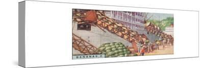 'Bananas 2. - Loading a Steamship, Costa Rica', 1928-Unknown-Stretched Canvas Print