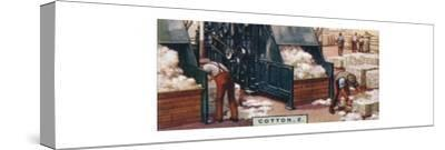 'Cotton, 2. - Breaking up Bales in Mixing Room, England', 1928-Unknown-Stretched Canvas Print