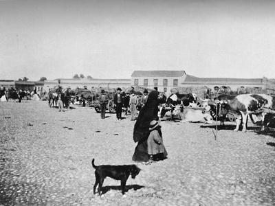 'Market Day at Chillan', 1911-Unknown-Framed Photographic Print