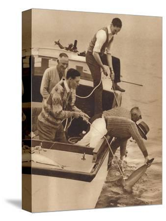 'Big Game Fishing, Bay of Islands, New Zealand', c1927, (1937)-Unknown-Stretched Canvas Print