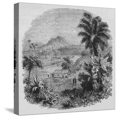 'View in Cayenne', c1880-Unknown-Stretched Canvas Print