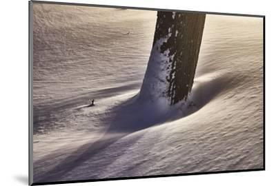 Trunk with snowdrift, light, artistically, medium close-up, detail-Martin Ley-Mounted Photographic Print