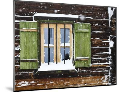 hut window with shutters, snowdrift, detail-Martin Ley-Mounted Photographic Print