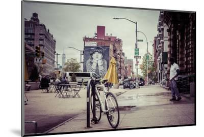 Wallpainting and Groundskeeping in neighbourhood of Williamsburg, Brooklyn, New York, USA-Andrea Lang-Mounted Photographic Print