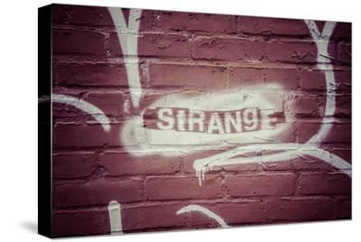 Strange Graffiti in Williamsburg neighbourhood, Brooklyn, New York, USA-Andrea Lang-Stretched Canvas Print