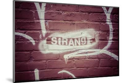 Strange Graffiti in Williamsburg neighbourhood, Brooklyn, New York, USA-Andrea Lang-Mounted Photographic Print