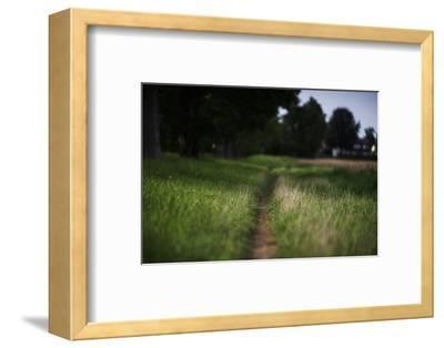 small path through a meadow-Benjamin Engler-Framed Photographic Print
