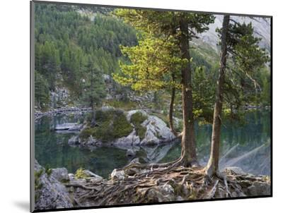 Lago di Saoseo, Grisons, Switzerland-Michael Jaeschke-Mounted Photographic Print