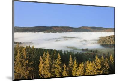 Morning fog over the Schluchsee, Black Forest, Baden-Wurttemberg, Germany-Markus Lange-Mounted Photographic Print