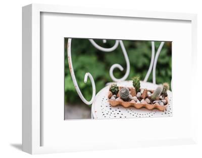 Minicacti in egg box, close up, Still life Easter-mauritius images-Framed Photographic Print