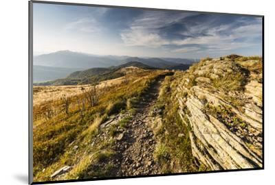 Europe, Poland, Podkarpackie Voivodeship, Bieszczady, Bukowe Berdo - Bieszczady National Park-Mikolaj Gospodarek-Mounted Photographic Print