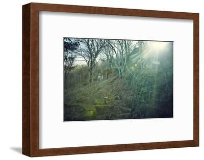 Sunray and remains of a defensive wall of a bunker on a mountain in a wood in winter in Alsace-Axel Killian-Framed Photographic Print
