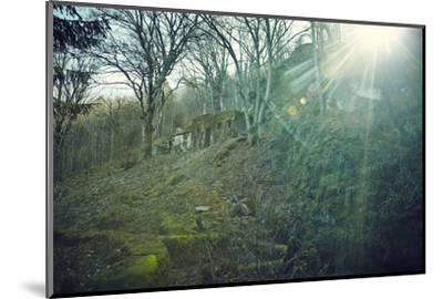 Sunray and remains of a defensive wall of a bunker on a mountain in a wood in winter in Alsace-Axel Killian-Mounted Photographic Print