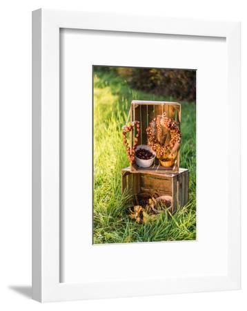 meadow, wooden boxes, autumnal decoration,-mauritius images-Framed Photographic Print