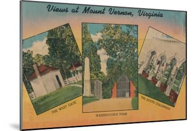'View at Mount Vernon, Virginia', 1946-Unknown-Mounted Giclee Print