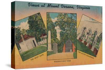 'View at Mount Vernon, Virginia', 1946-Unknown-Stretched Canvas Print