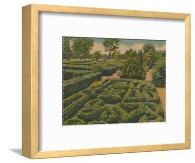 'The Flower Garden, general view', 1946-Unknown-Framed Giclee Print
