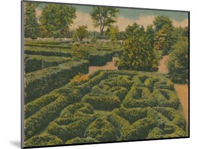 'The Flower Garden, general view', 1946-Unknown-Mounted Giclee Print