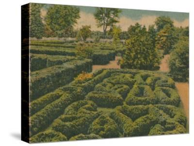 'The Flower Garden, general view', 1946-Unknown-Stretched Canvas Print