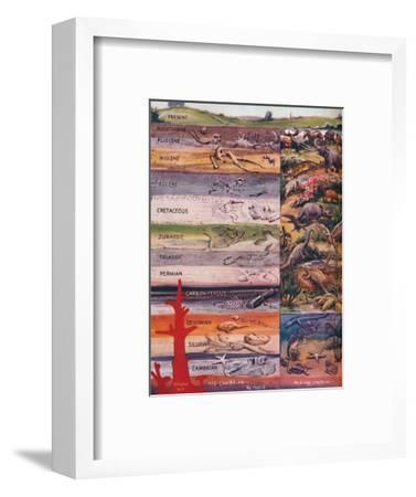 'The Succession of Life in the Rocks', 1935-Unknown-Framed Giclee Print