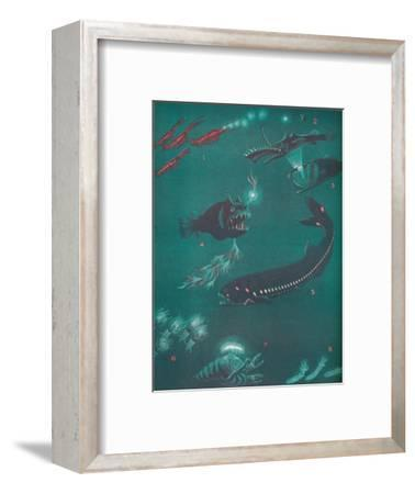 'Life Half a Mile Below The Sea's Surface', 1935-Unknown-Framed Giclee Print