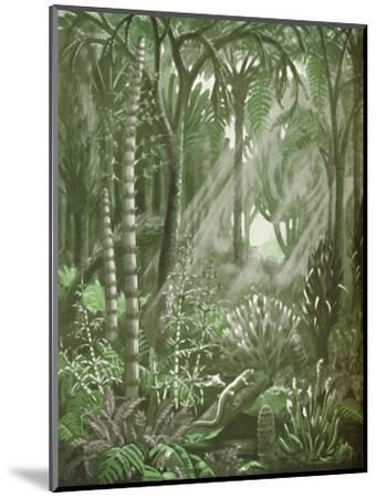 'What the Mighty Coal Forests Were Like', 1935-Unknown-Mounted Giclee Print