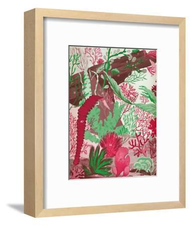 'A Collection of Over Fifty Species of Red, Green and Brown Seaweeds', 1935-Unknown-Framed Giclee Print