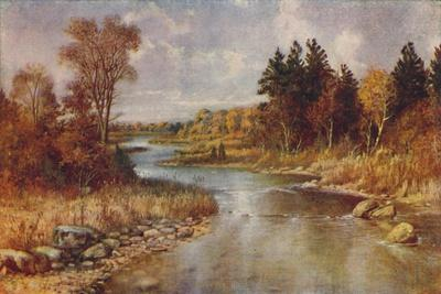 'Canadian Forest Scene', 1924-Unknown-Framed Giclee Print