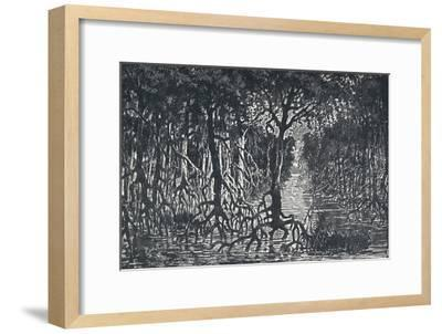 'Equatorial African Forest', 1924-Unknown-Framed Giclee Print