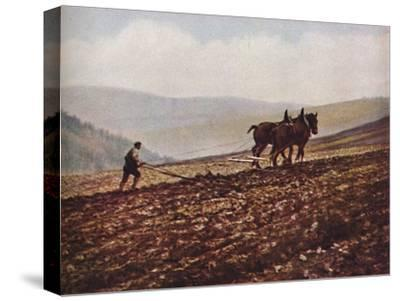 'Scotland', c1930s-Unknown-Stretched Canvas Print