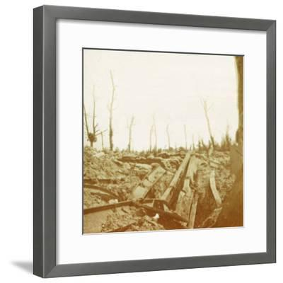 Banks of the River Yser, Diksmuide, Belgium, c1914-c1918-Unknown-Framed Photographic Print
