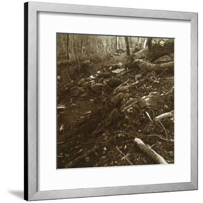 Bodies, Les Éparges, northern France, 1915-Unknown-Framed Photographic Print