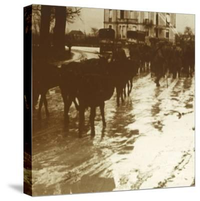 Mule train with supplies, Verdun, northern France, c1914-c1918-Unknown-Stretched Canvas Print