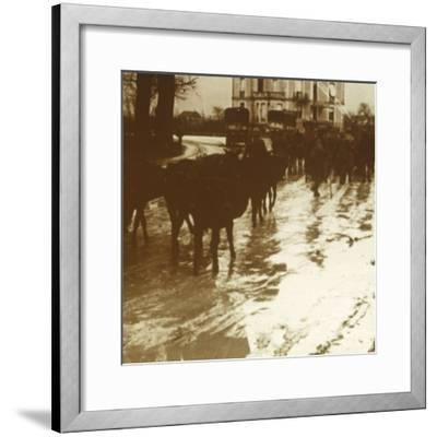Mule train with supplies, Verdun, northern France, c1914-c1918-Unknown-Framed Photographic Print
